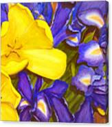 Iris Withtulip Canvas Print