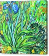 Irises Ala Van Gogh Canvas Print