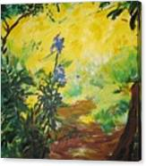 IRISES  And SUNLIGHT Canvas Print