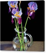 Irises In A Glass Pitcher Canvas Print
