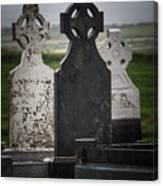 Irish Cemetery P7010429 Canvas Print
