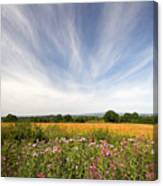 Irish Country Side Meadows Canvas Print