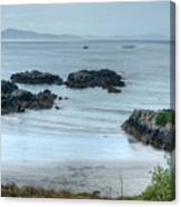 Irish Tidal Pool Canvas Print