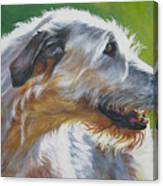 Irish Wolfhound Beauty Canvas Print