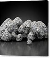 Iron Ore Nugget Collection Canvas Print