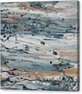 Irrational Exuberance Canvas Print