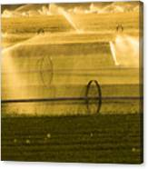Irrigation System Operating At Sunset Canvas Print