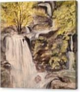 Iruppu Falls  Canvas Print