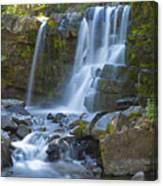 Irwin Falls Canvas Print