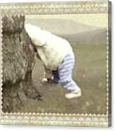 Is Bunny Behind Tree? Canvas Print