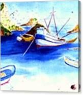 Isla Isabela Canvas Print