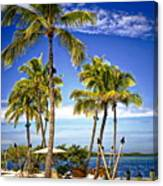 Islamorada - Florida Canvas Print