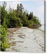 Island - Beach Canvas Print