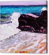 Island Cruise Canvas Print