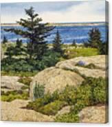 Island Harebells Canvas Print