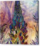 Island Lupin 6 Canvas Print