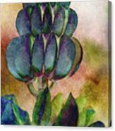 Island Lupin Canvas Print