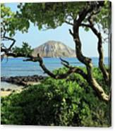 Island Through The Trees Canvas Print