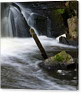 It Looks Like A Lever... Canvas Print