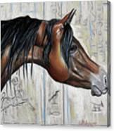 Arabian 5 Canvas Print