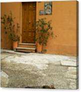 Italian Cat Canvas Print