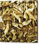 Italian Market Dried Mushrooms Canvas Print