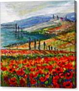 Italy Tuscan Poppies Canvas Print