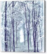 Its In The Trees Canvas Print