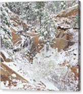 It's Mid May. We're Fast Approaching The End Of Our Snow Season.  Canvas Print