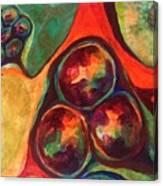 Jabuticaba Canvas Print