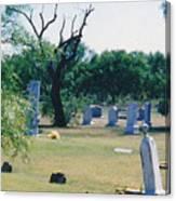 Jack Rabbit In Cementery Canvas Print
