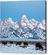 Jackson Hole The Grand Tetons Canvas Print