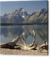 Jackson Lake 1 Canvas Print