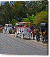 Jackson Square Horse And Buggies Canvas Print