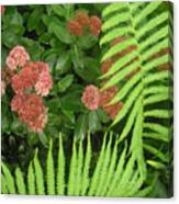 Jacqueline's Garden - Camaraderie Of Textures Too Canvas Print