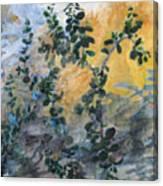Jade Canvas Print