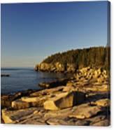 Jagged Coast Of Maine Canvas Print