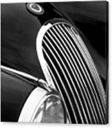 Jaguar Grille Black And White Canvas Print
