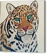 Jaguar Painting Canvas Print