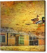 January 30 2010 Canvas Print