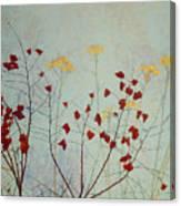 January 8 2010 Canvas Print