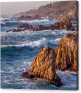 January In Big Sur Canvas Print