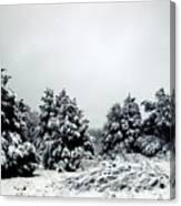 January Snow Iv Canvas Print