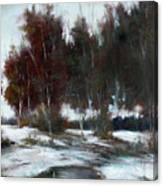 January Thaw Canvas Print