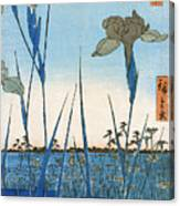 Japan: Iris Garden, 1857 Canvas Print