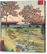 Japan: Maple Trees, 1858 Canvas Print