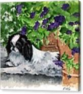 Japanese Chin Puppy And Petunias Canvas Print