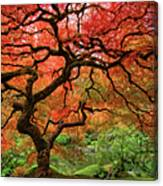 Japenese Garden, Portland Canvas Print