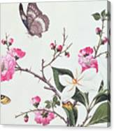 Japonica Magnolia And Butterflies Canvas Print