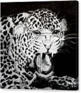 Jaquar II Canvas Print